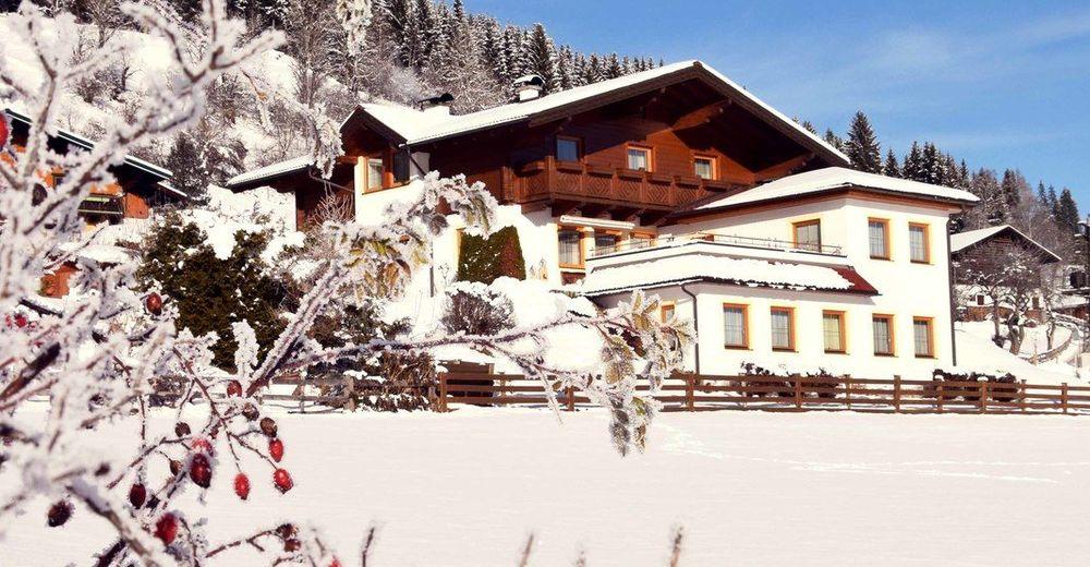 Salzburger Nachrichten | calrice.net