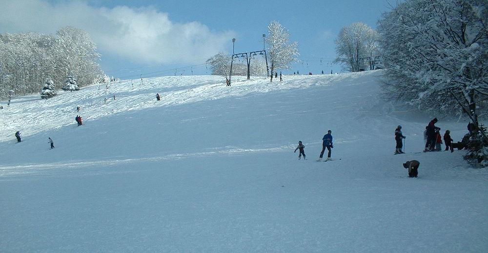 Planul pistelor Zonă de schi Bewegungszentrum Pfulb