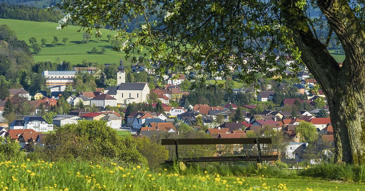 Singlebrse in Oberndorf an der Melk bei Scheibbs und