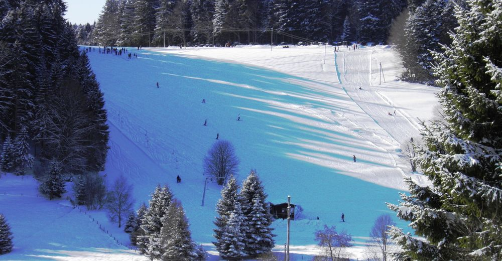 Pisteplan Skiområde Wehrhalden
