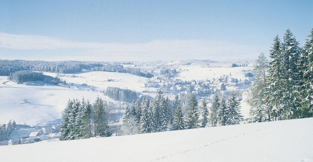Pistenplan Skigebiet Schonach - Winterberg