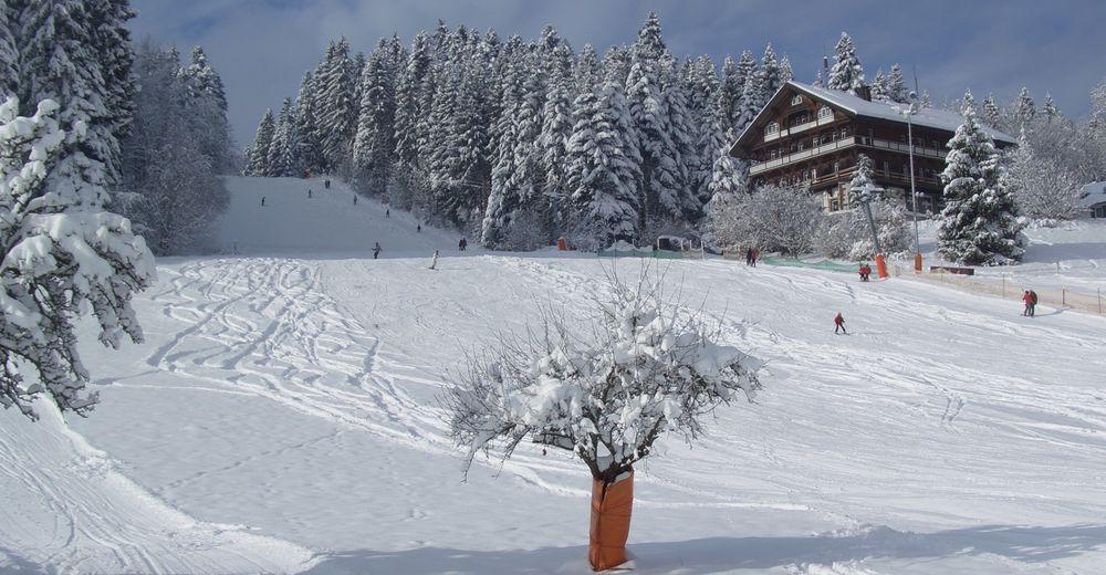 Plan skijaških staza Skijaško područje Wintersport Stokinger Freudenstadt
