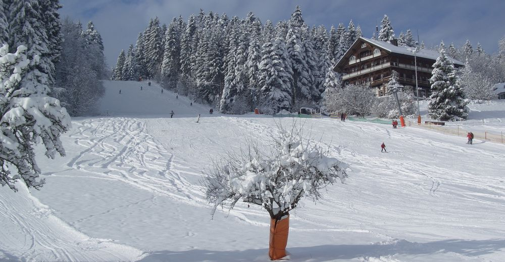 Mapa zjazdoviek Lyžiarske stredisko Wintersport Stokinger Freudenstadt
