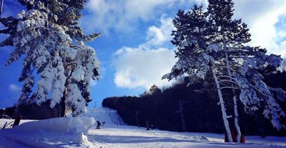Plan skijaških staza Skijaško područje Nižná Polianka / Makovica