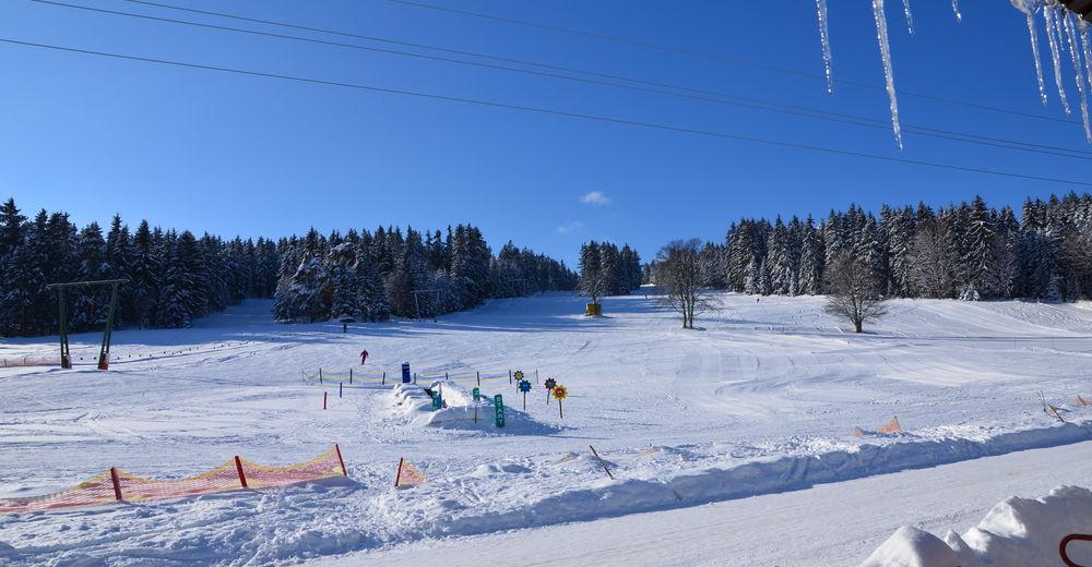Pisteplan Skiområde Sandl - Viehberg