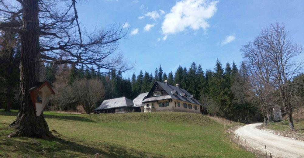 Pinkenkogel-Trails vom Adlitzgraben aus - BERGFEX - E-MTB