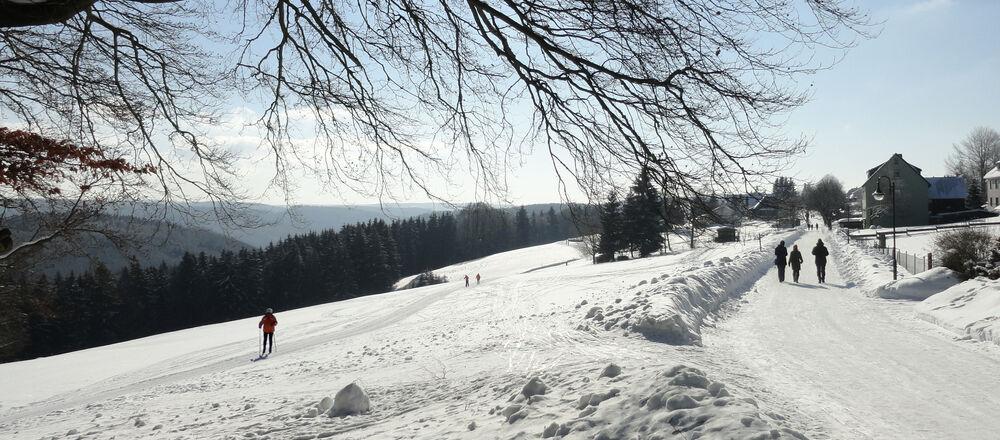 Loipenplan Frauenwald