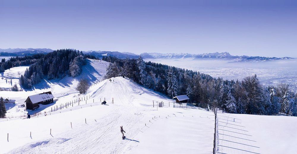 Plan de piste Station de ski Pfänderbahn - Bregenz am Bodensee