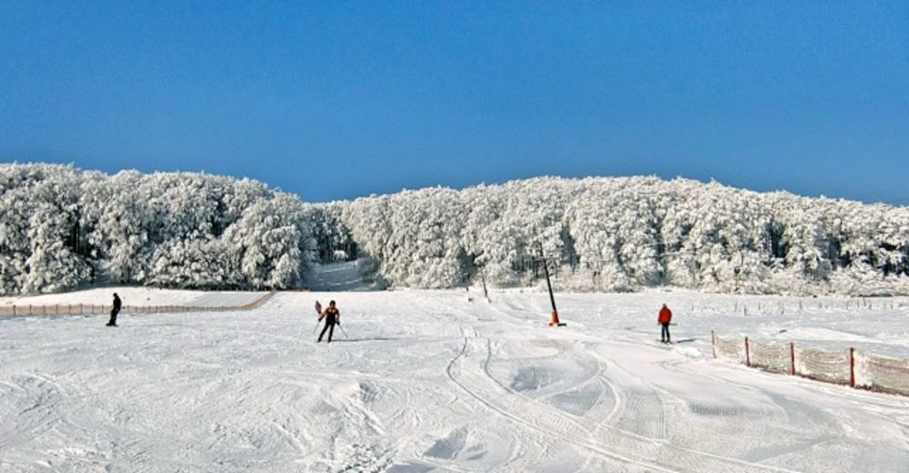 Planul pistelor Zonă de schi Hohes Gras / Kassel