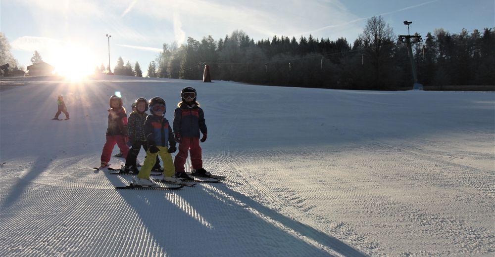 Pisteplan Skigebied Wimmerlift / Hart-Purgstall