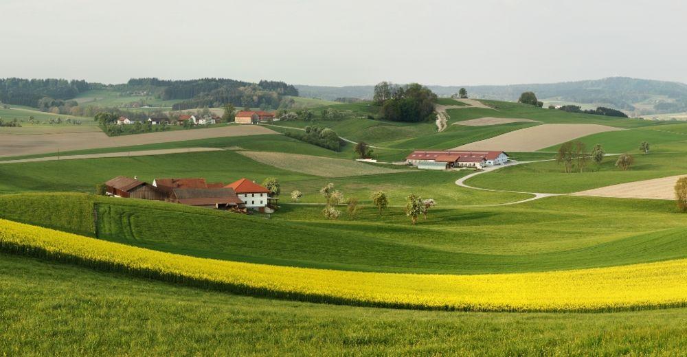 Oldtimertreffen am Lohnsburger Kirtag - Ried - carolinavolksfolks.com