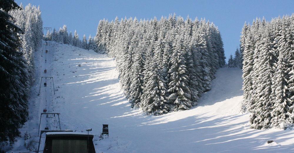 Piste map Ski resort Ski-Alpinum Schulenberg