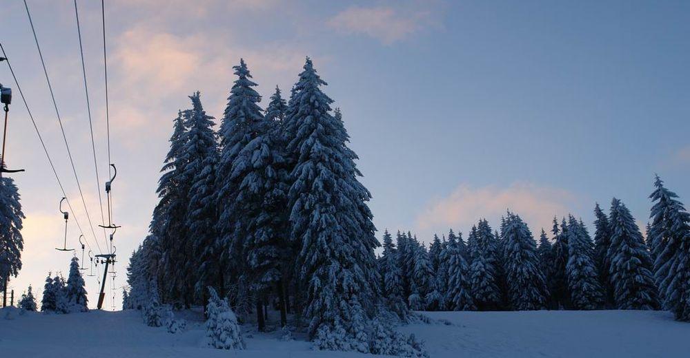 Pistplan Skidområde Schonach - Rohrhardsberg-Lift