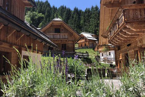 Singleurlaub Angebote und Pauschalen Irdning - bergfex