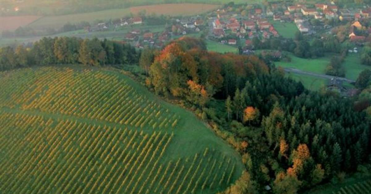 Gamlitz, Sdsteiermark: Calendar - Sattlerhof