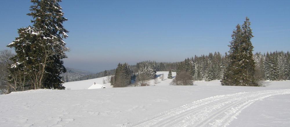 Loipenplan Triberg im Schwarzwald