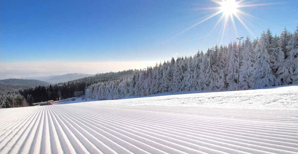 Planul pistelor Zonă de schi Jauerling - Maria Laach