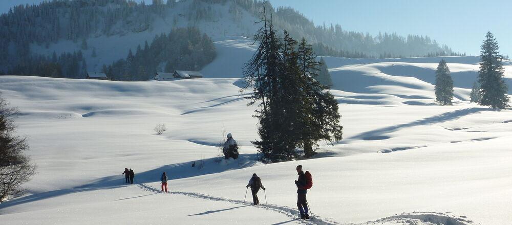 Loipenplan Steyr und die Nationalpark Region
