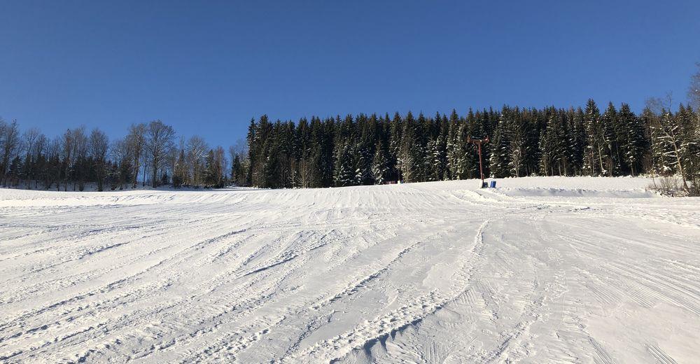 Pistplan Skidområde Skilift Schneidhofer - Falkenstein