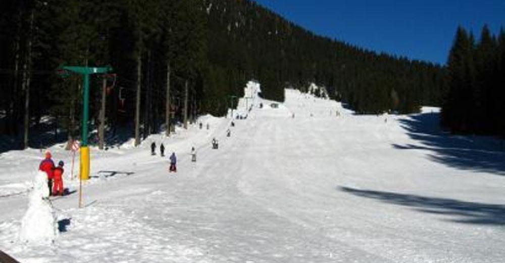 Plano de pista Estación de esquí Pokljuka - Viševnik