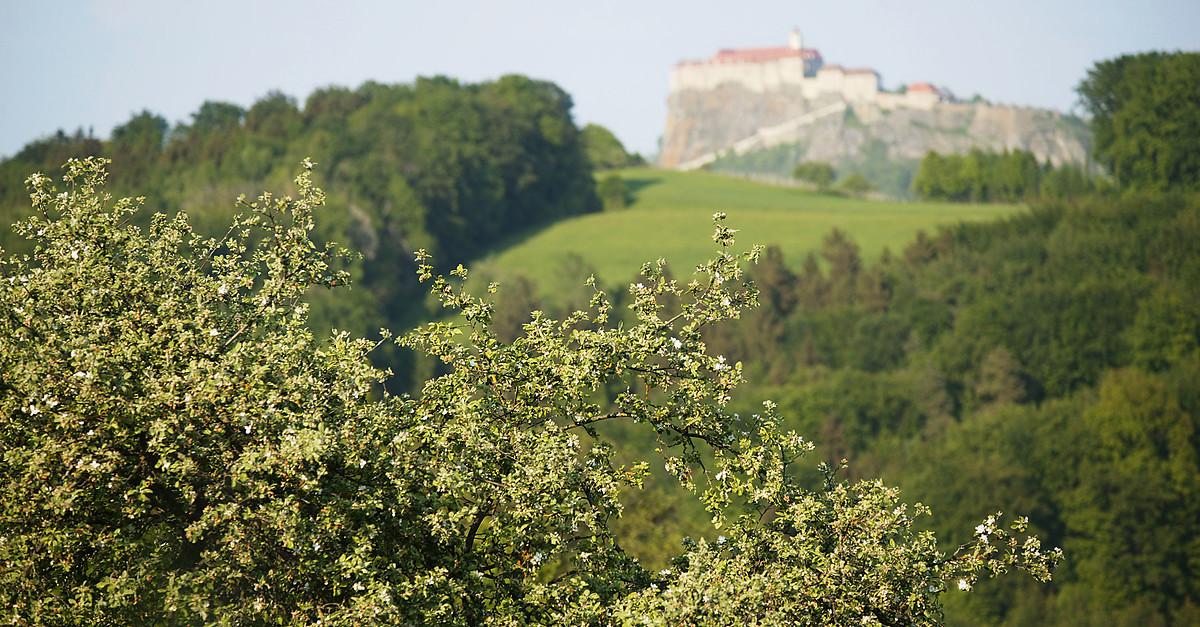 Single-Urlaub mit Kind Tilbud og Alt inklusive Stubenberg - bergfex