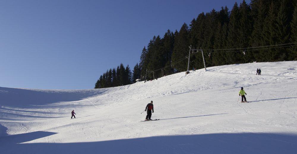 Plan skijaških staza Skijaško područje Furtwangen - Skilift Bregtallift