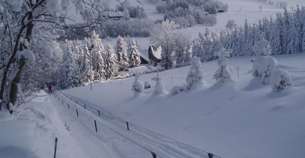 Pistenplan Skigebiet Rotterhang / Schellerhau