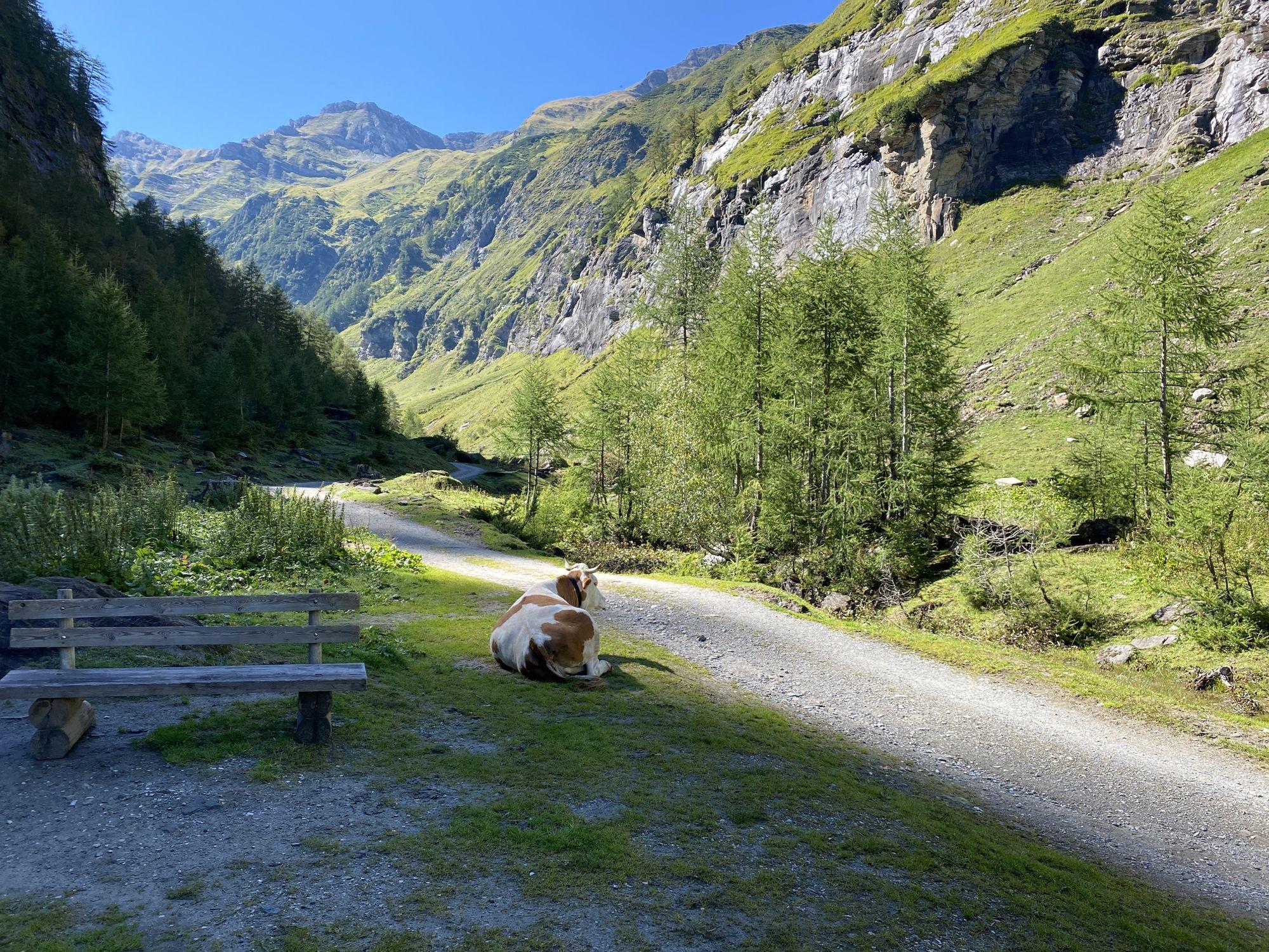 Krumltal in Rauris September 2020 - BERGFEX - Wanderung - Tour Salzburger Land
