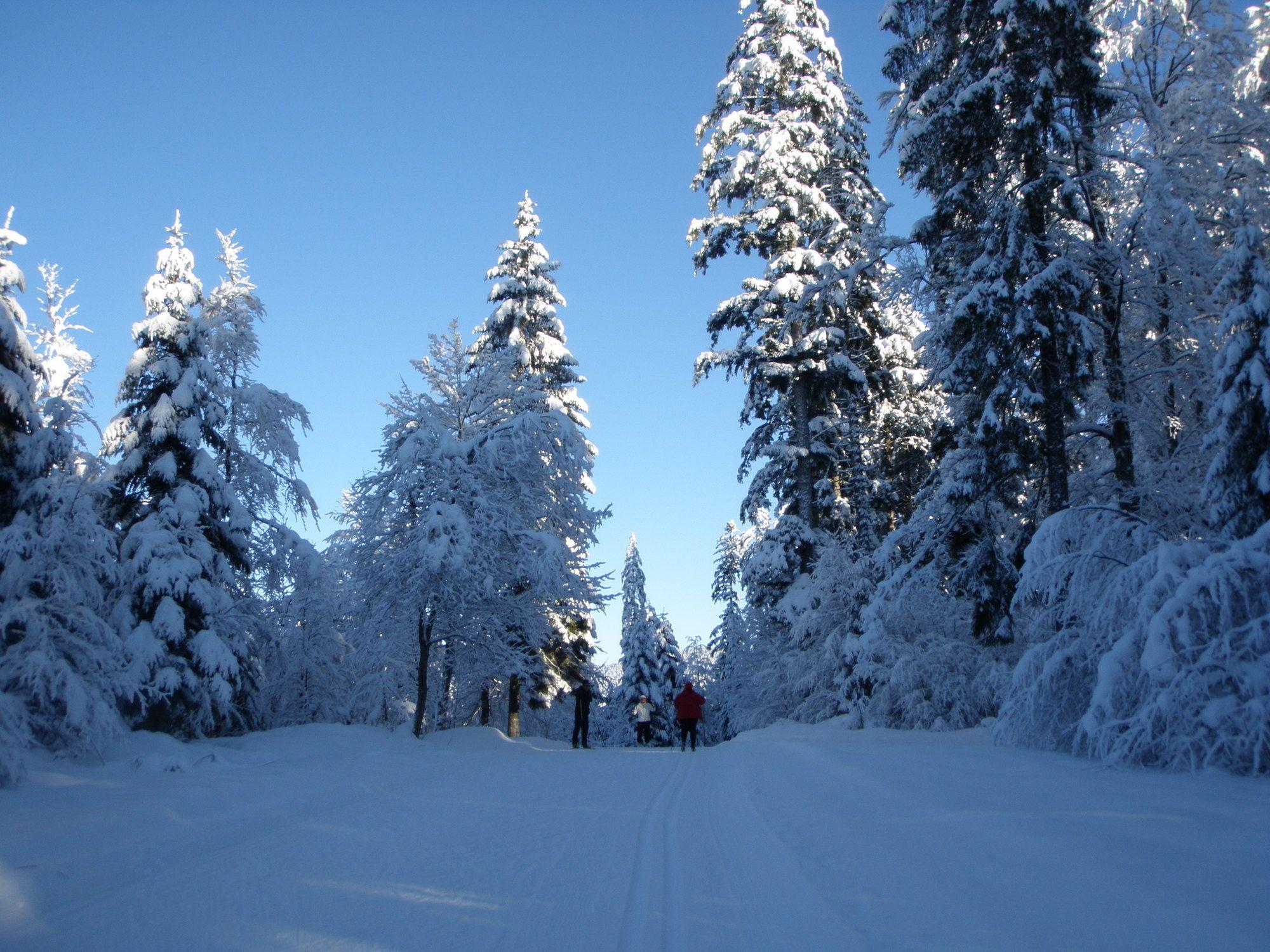 BERGFEX: Ski de fond Les Fourgs / Herba: Ski de fond Les Fourgs / Herba